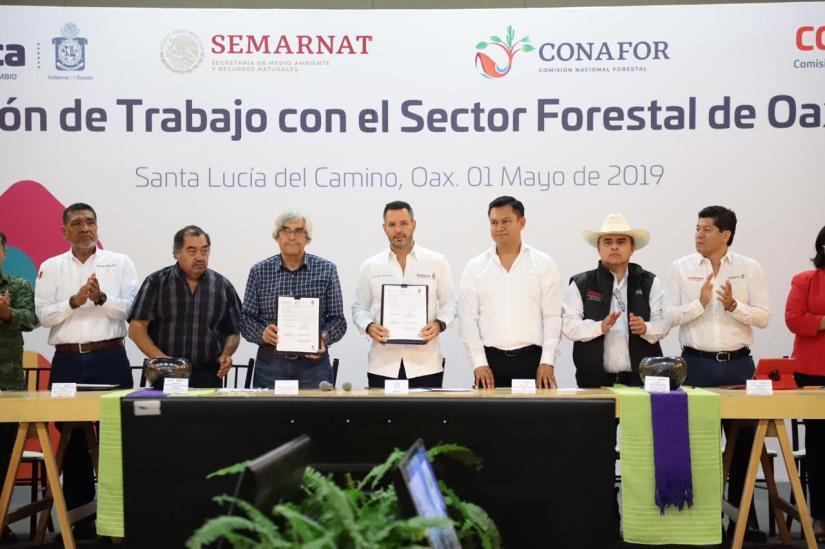 Acuerdan Gobierno de Oaxaca y Conafor trabajo coordinado en materia forestal (2)